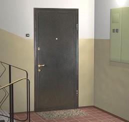 входные двери вид снаружи