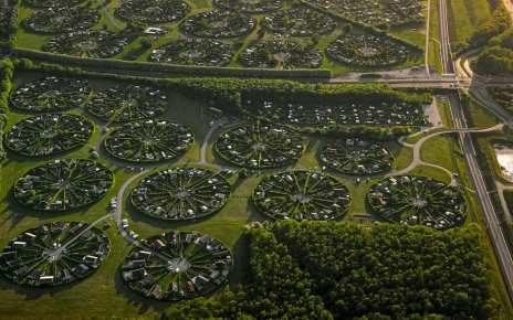 Город дерево или город сад